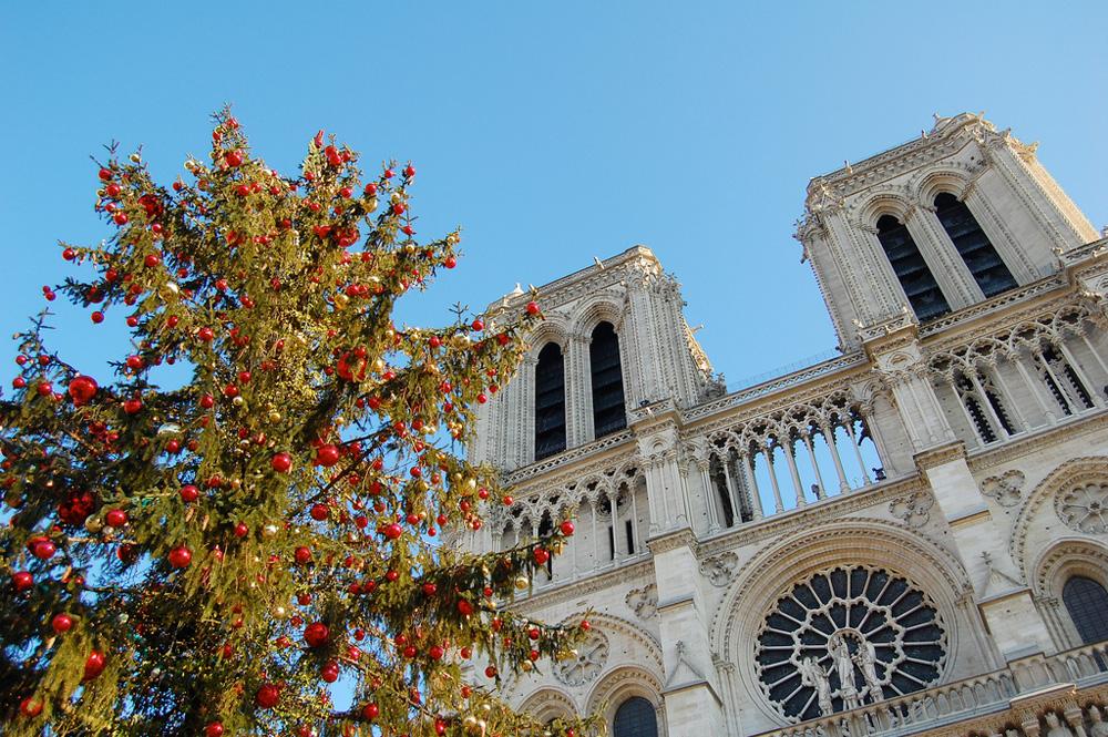 Собор Парижской Богоматери, Париж, Франция, Европа