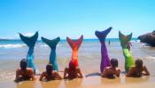 Аттракционы: Академия русалок
