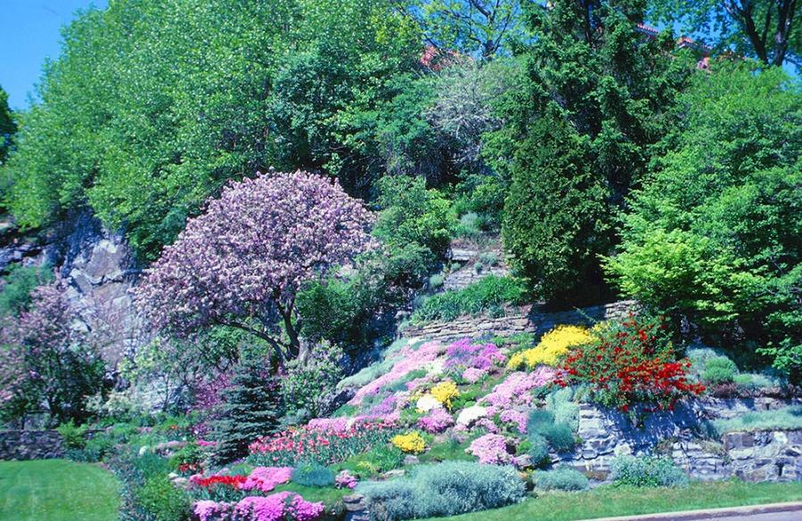 Дизайн сад своими руками фото